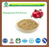 GMP factory supply Hot sale high quality Punicalagin