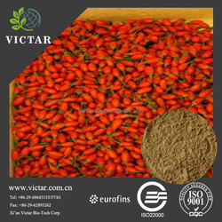 Hot sale wolfbrerry extract polysaccharide peptide