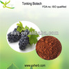 Natural Organic Grape Seed Extract Powder/Grape Seed Extract For Sale