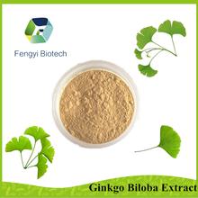Ginkgo Biloba Extract/ Ginkgo Flavone Glycsides 24%/Total Trepene Lactones 6%