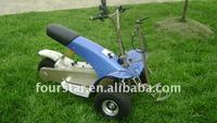 Utility cruiser SX-E0906-3A golf cart