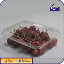 2014 factory promotion square clear plastic tray for fruit