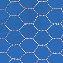 Hexagonal Chicken Wire Netting for Poultry Mesh