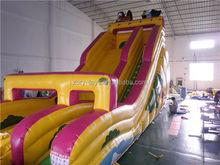 summer inflatable slide, ZY-DS742 branded amusement park /inflatable slide