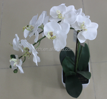 Cheap price artificial orchid flower bonsai for sale