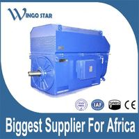 high voltage three phase asynchronous electric motor
