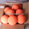 Schwing DN150 wear resistant condenser tube cleaning ball