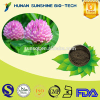 Red Clover Extract Powder / Trifolium pratensel L Extract / 8%/10%/20%/40%/60%Isoflavones