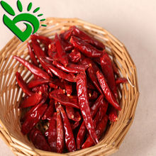 SUPPLIER OF RED CHILLI