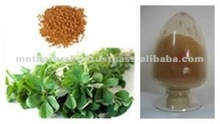 Indian herbs Pure Fenugreek Seed Extract