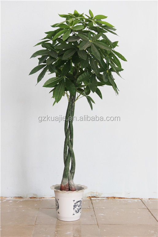 High quality home decorative artificial money tree lucky