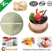 Pork Gelatin Powder 250 Bloom, Bulk Gelatin Powder 250 Bloom With Best Price China Supplier