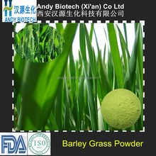 ISO Certified Natural Young Barley Grass Powder