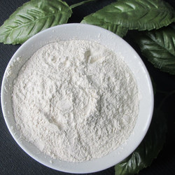 factory supplier onion powder