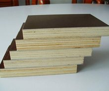 finger jopint core film faced plywood with price 240$/cbm