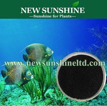 Pure Natural Seaweed Extract Fertilizer