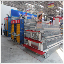 A Class Best Sale Chicken Egg Layer Cages