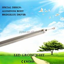 Substrato nome científico de nft cogumelo hidropônico importação led jardim luz levou crescer lâmpada