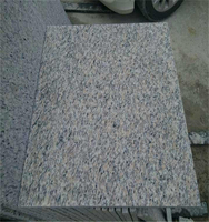 Chinese cheap granite Tiger Skin Red for tile/slab