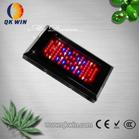 black star 240w red blue ratio customized led grow light wholesale 80*3w leds lights for plants/fruits/vegetables