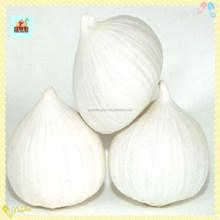 2014 New Fresh White Natural Solo Garlic