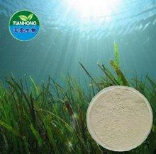Natural puro extracto de algas marinas/fucoidin laminaran algina