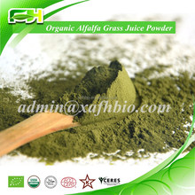 Pure Natural High Quality Young Organic Alfalfa Juice Green Powder