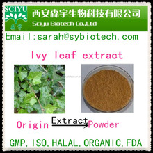 Natural Plant Ivy Leaf Extract 10%saponins