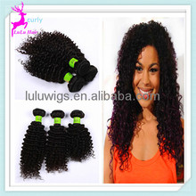 Superior Quality Brazilian Kinky Curly Hair Extention