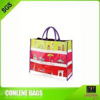 pp woven bag shopping