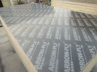 best quality arrow ply phenolic plywood with / China film faced plywood factory / commercial plywood / marine plywood price