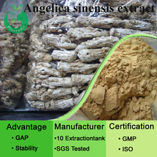 Health care dong quai extract angelica sinensis extract