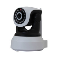 BW IP Camera P2P Megapixel hidden camera wireless ip camera with wifi,HD,TF Card