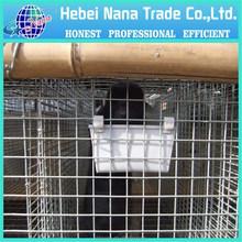 Zincato saldato maglia di rete metallica per cane/gatto gabbia