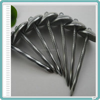 Electro Galvanized Roofing Nails Price/Umbrella Roofing Nails