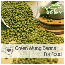 myanmar type mung bean sprout machine for green mung bean