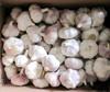 Wholesale Prices Red Garlic Chinese Natural Garlic