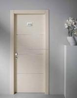 Widely used flush door price