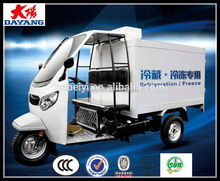 China Supplier Compressor Freezer Adult Tricycle