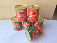 High lycopene hot sell 850g canned & tinned tomato paste China's tomato