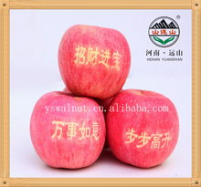 Wholesale Organic Apples