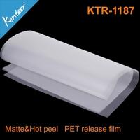 anti-static pet film