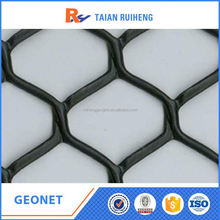 Thermoplastic Resin Geonet