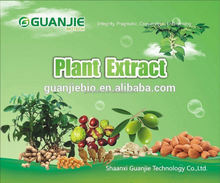 Top Quality From 13 Years experience manufacture Green Lipped Betti extract