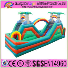 Palm Tree Dry Slide Inflatable