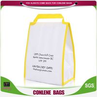 The Leading Manufacturer Of Freezer Cooler Bags