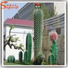Home decor artificial crafe cactus plant all kinds of cactus and succulent artificial plants