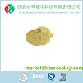 Herbario Natural jerusalén alcachofa inulina extract powder