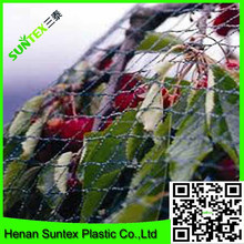 fencing wire mesh/animal protection fence net/anti bird netting