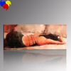 Paintings Nude Sexy Women Art/Paintings Of Women in Dresses/Women Decorative Painting